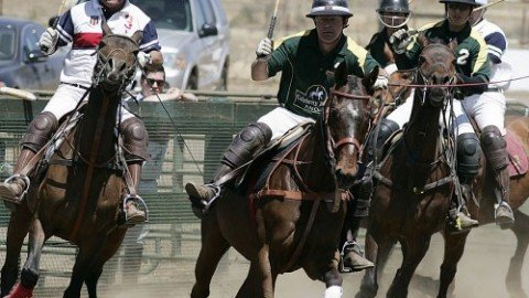 "A Polo Match in Temecula ""The Camel Cup"""
