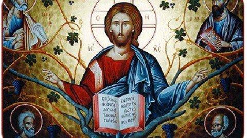 Sunday, August 19, 2018 13th Sunday After Pentecost – The Wicked Tenants الاحد، 19 آب 2018 الاحد الثالث عشر بعد العنصرة