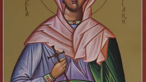 SUNDAY, JULY 7, 2019 Fourth Sunday After Pentecost – The Centurion's servant Commemoration of our Holy Fathers Thomas of Maleum, Akakios, mentioned in the 'Ladder', and of the Holy and Great Woman Martyr Kyriake (Class 5) الاحد، 7 تموز 2019               الاحد الرابع بعد العنصرة